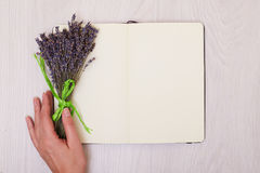 Lavender desk on background top view mock up. Open sketchbook. n. Creative mock up layout made of lavender branches with copy space on table homemade flat lay stock photo