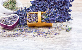 Lavender dried Stock Photography