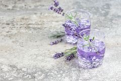 Lavender drink Summer tonik lemonade Still life Stock Images