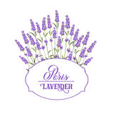 The lavender elegant card. Wreath of lavender flowers in watercolor paint style. The lavender elegant card with frame of flowers and text. Lavender garland for Stock Photography