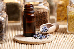 Lavender essential oil stock image