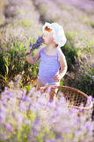 Lavender fairy. Lovely red hair little girl in a lavender field Royalty Free Stock Photo