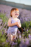 Lavender fairy Royalty Free Stock Photos