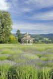 Lavender Farm Gazebo. Gazebo on a lavender farm in Hood River, Oregon. Focus = the gazebo Royalty Free Stock Images