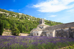 Lavender field and an ancient monastery abbey Abbaye Notre-Dame. Beautiful landscape lavender field and an ancient monastery abbey Abbaye Notre-Dame de Senanque Stock Photography