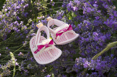 Lavender field with baby girl shoes on a stem Stock Image