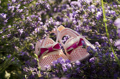 Lavender field and baby girl shoes on a stem Stock Photo