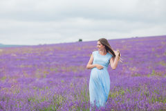 Lavender field and a happy pregnant woman. Beautiful Lavender field and a happy pregnant woman royalty free stock photography