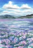Lavender field landscape watercolor. Clouds in the sky Stock Photos