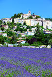 Lavender field and old town of Banon Royalty Free Stock Images