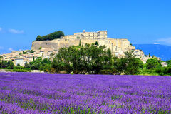 Lavender field and old town of Grignan Stock Photos