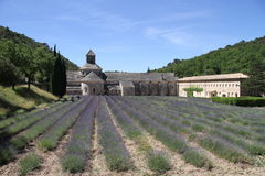 Lavender field at Sénanque Abbey Stock Photography