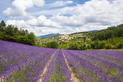 Lavender field and village Royalty Free Stock Photos
