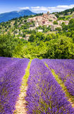 Lavender field and village, France. Royalty Free Stock Photography