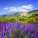 Lavender field and village, France. Aurel little village  in south of france with a lavender field in front of it Royalty Free Stock Photo