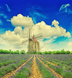 Lavender field with windmill and dramatic blue sky in Provence Stock Image