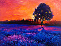 Lavender fields. Original oil painting of lavender fields on canvas.Modern Impressionism Royalty Free Stock Photo