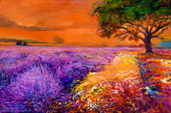 Lavender fields. Original oil painting of lavender fields on canvas.Sunset landscape.Modern Impressionism Royalty Free Stock Images