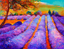 Lavender fields. Original oil painting of lavender fields on canvas.Sunset landscape.Modern Impressionism Royalty Free Stock Photography