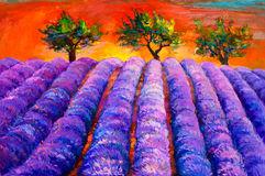 Lavender fields. Original oil painting of lavender fields and trees on canvas.Sunset landscape.Modern Impressionism Stock Photo