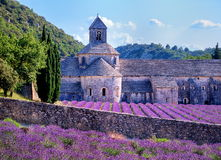 Lavender fields, Provence, France. Lavender fields at Senanque monastery, Gordes, Provence, France Stock Image