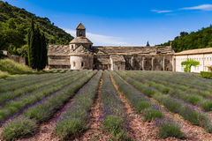 Lavender fields, Provence, France. Lavender fields at Senanque monastery, Gordes, Provence, France Stock Images