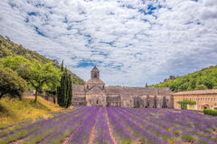 Lavender fields with Senanque monastery in Provence, Gordes, France Royalty Free Stock Photos
