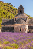 Lavender fields with Senanque monastery in Provence, Gordes, France Stock Photos