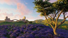 Lavender fields with a solitary tree 3d rendering. Lavender fields with a solitary tree Stock Image
