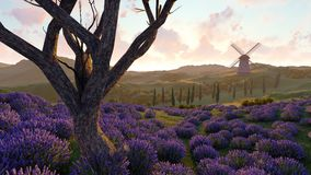 Lavender fields with a solitary tree 3d rendering. Lavender fields with a solitary tree Royalty Free Stock Photo