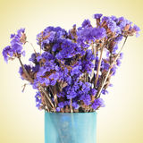 Lavender flower Royalty Free Stock Image
