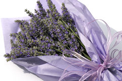 Lavender flower bouquet. Wrapped with purple tissue paper stock images