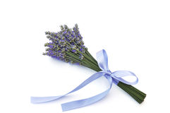 Lavender flower bouquet Royalty Free Stock Photography