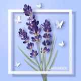 Lavender flower design Stock Photos