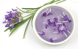 Lavender flower and extract Royalty Free Stock Photo