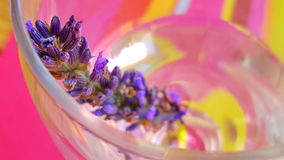 Lavender flower in a glass Stock Photography