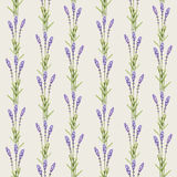 Lavender flower illustrations Stock Photo