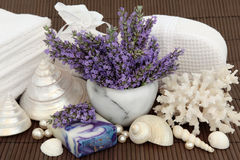 Lavender Flower Spa Royalty Free Stock Image