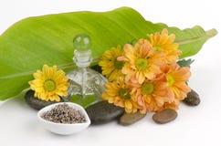 Lavender Flower Tea (Lavandula angustifolia (United Kingdom) Stock Photography