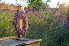 Lavender flower wreath Royalty Free Stock Images