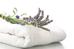 Lavender flowers. Concept spa and beauty royalty free stock photos