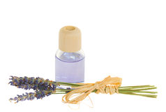 Lavender flowers and aroma oil Stock Images