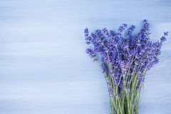Lavender flowers on the blue wood  background Stock Photo