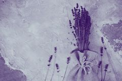 Lavender flowers, bouquet, overhead on white vintage background royalty free stock photography