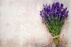 Lavender flowers, bouquet on rustic background, overhead royalty free stock photos