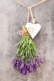 Lavender flowers, bouquet on rustic background, overhead royalty free stock photography