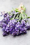 Lavender flowers, bouquet on rustic background, overhead stock photography
