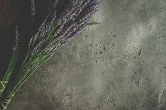 Lavender Flowers Bouquet on Rustic Dark Background. Treats Sleep Issues stock image