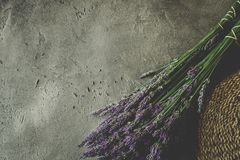 Lavender Flowers Bouquet on Rustic Dark Background. Treats Sleep Issues royalty free stock photos