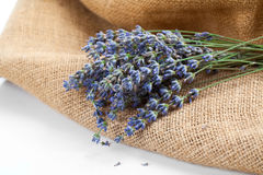 Lavender flowers on the burlap Royalty Free Stock Photo